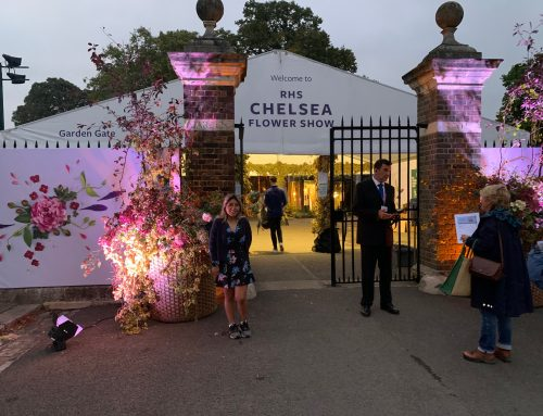 Special early entry to RHS Chelsea
